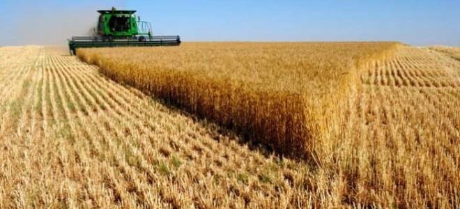 Çiftçi enflasyonun mağduru