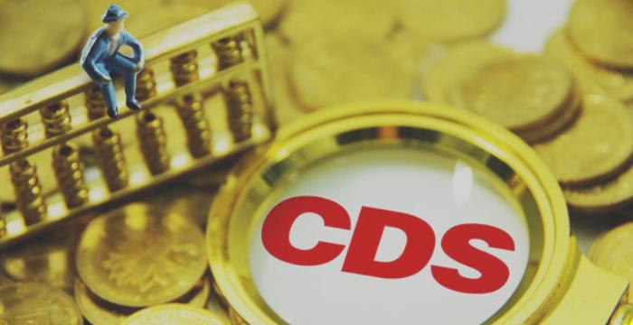 CDS Nedir?