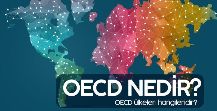 Ekonomik Kalkınma ve İşbirliği Örgütü OECD Nedir?