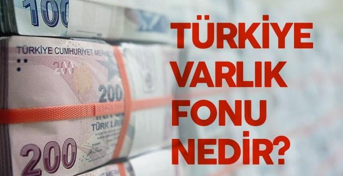 Türkiye Varlık Fonu Nedir?