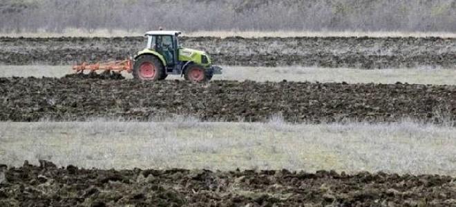 Küresel tahıl üretimi artarken tüketim ve stoklar yükseliyor