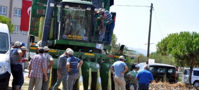 Pamuk üreticisinin fiyat endişesi