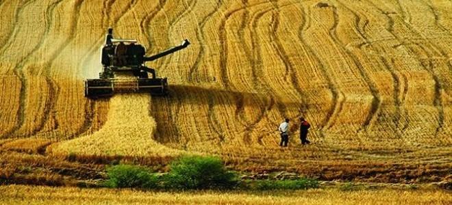 Bazı tarım ürünlerinde sıfır gümrük vergisi uygulaması kaldırıldı