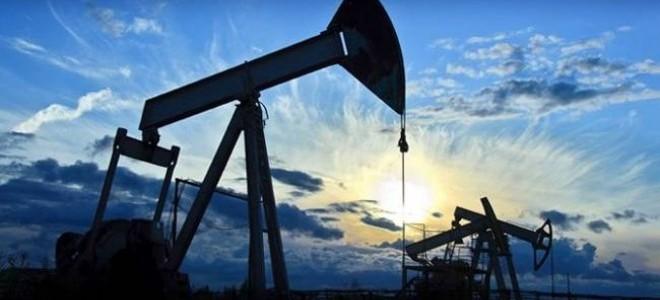 ECB: Petrol fiyatlarında düşüş ve mali teşvikler yukarı yönlü riskler