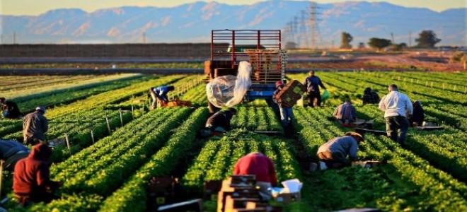 Tarım dışı işsizliğin Ekim'de artması bekleniyor