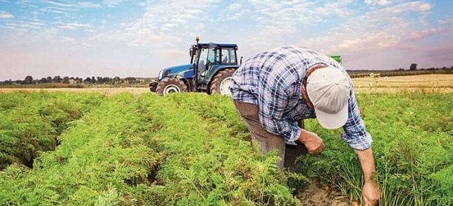 Tarım ÜFE temmuzda arttı
