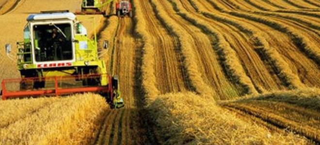 Tarım ürünleri üretici fiyatları Kasım'da arttı
