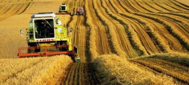 Tarım ürünleri üretici fiyatları Mart'ta arttı