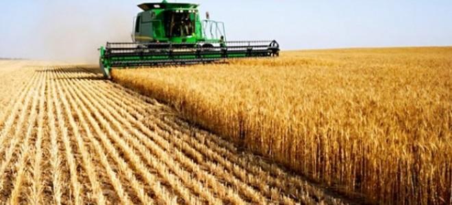 Tarım Ürünlerinde ÜFE Yükseldi