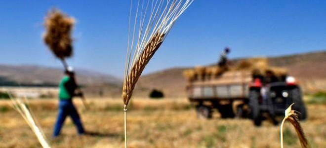 Tarım istihdamı Nisan'da, Mart'a göre arttı