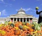 Gıda İsrafına Karşı Türk Çözümü Dünyada Yankı Uyandırdı