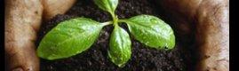 Toprağı zenginleştirecek yeni nesil gübre: Organomineral